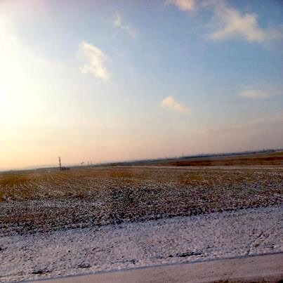 雪が降りかけた畑