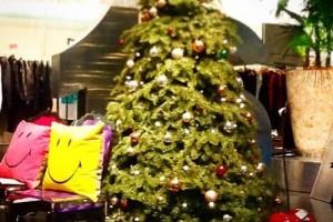 クリスマスツリーディスプレイ