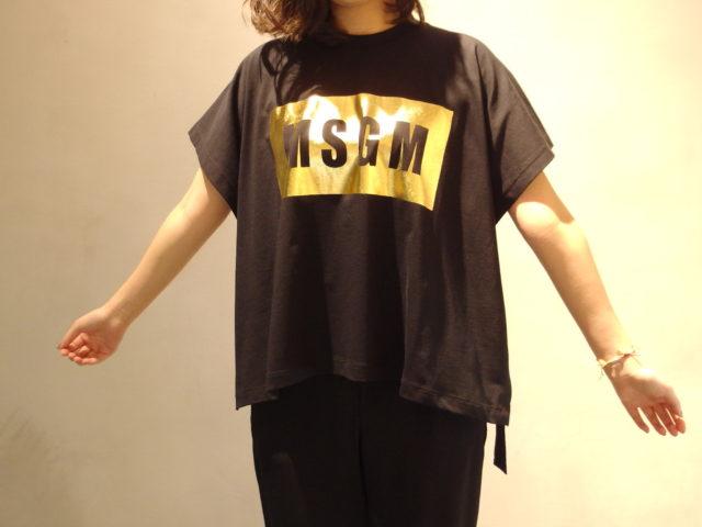 IMGP2885